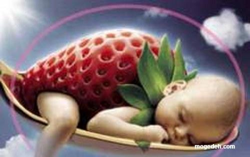دوران بارداری هفته به هفته,تغذیه دوران بارداری ماه به ماه