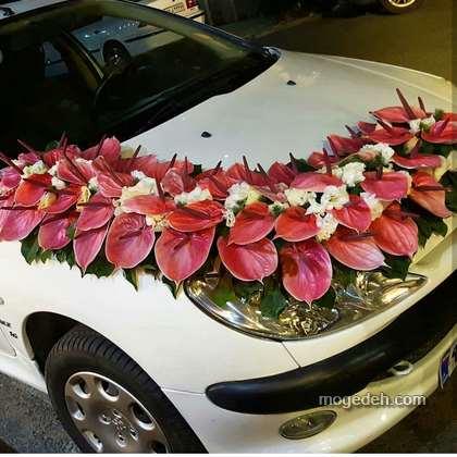 ماشین عروس 206 سفید