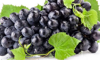خواص انگور سیاه