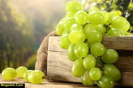 مضرات انگور
