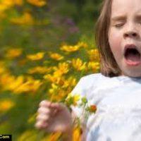 آلرژی بهاری | درمان حساسیت در فصل بهار با روشهای ساده