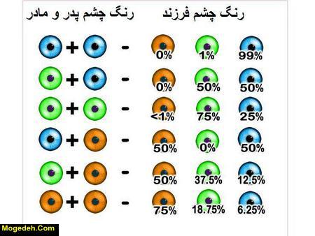 ژنتیک رنگ چشم