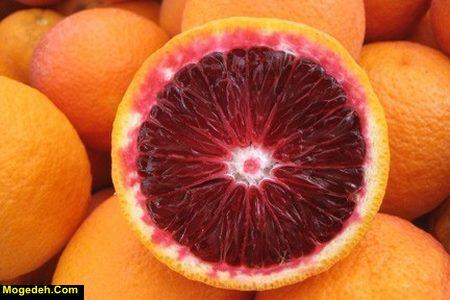 پرتقال خونی پیوند چیست