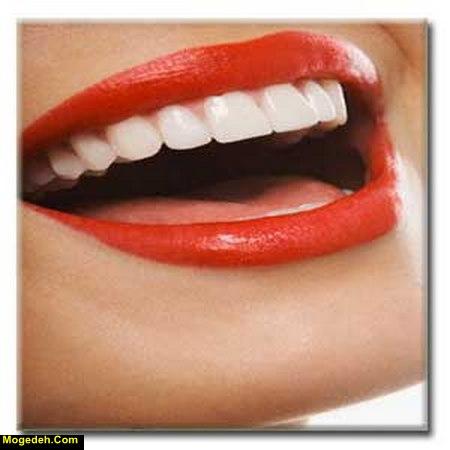 بهداشت دهان و دندان pdf