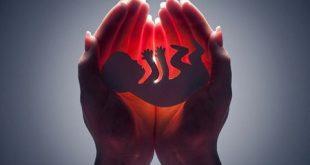 بعد از سقط جنین چه باید بخوریم