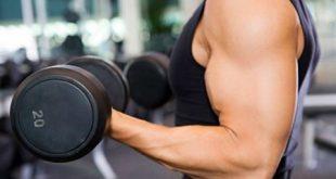 پروتئین برای عضله سازی