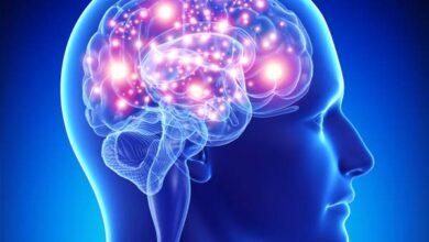 چگونگی کنترل افکار توسط مغز
