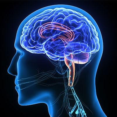 متخصص مغز و اعصاب خوب در تهران - مرکز نوروفیدبک مغز من